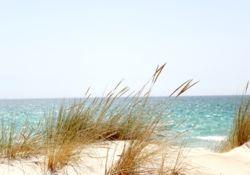 L'utilisation des gels ou des solutions hydro-alcooliques à la plage