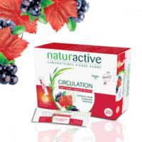 Naturactive Phytothérapie Fluides Solution Buvable Circulation 20 Sticks/10ml à VALS-LES-BAINS