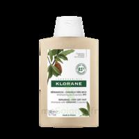 Klorane Beurre Cupuaçu Bio Shampoing Cheveux Très Secs 200ml à VALS-LES-BAINS