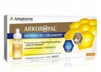 Arkoroyal Défenses Naturelles Gelée adulte 7 Doses/10ml à VALS-LES-BAINS