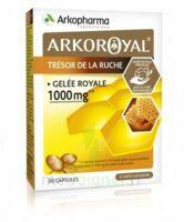 Arkoroyal Gelée Royale 1000 Mg Caps B/30 à VALS-LES-BAINS