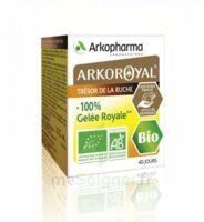 Arkoroyal 100% Gelée Royale Bio Gelée Pot/40g à VALS-LES-BAINS