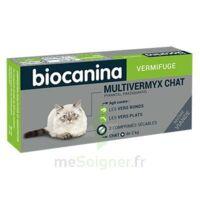 Biocanina Multivermyx Comprimés Vermifuge Chat B/2 à VALS-LES-BAINS