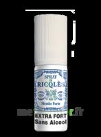 Ricqles Spray Buccal Sans Alcool Menthe 15ml à VALS-LES-BAINS