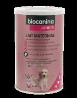 Biocanina Lait Poudre Maternisé B/400g à VALS-LES-BAINS