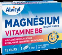 Govital Magnésium Vitamine B6 Comprimés B/45 à VALS-LES-BAINS