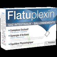 FLATUPLEXIN Poudre solution buvable gaz intestinaux ballonnements 16 Sachets à VALS-LES-BAINS