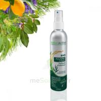 Naturactive Assaini'spray 200ml à VALS-LES-BAINS